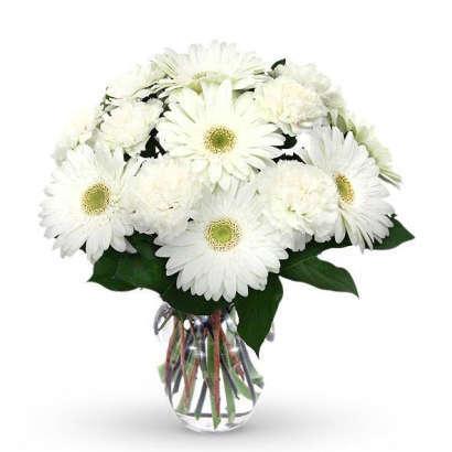 Szálas virágok: fehér gerbera